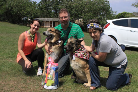 pooches-don-sunflower-bandanas-for-a-good-cause-featured